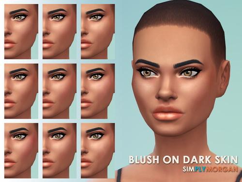 Simply Morgan: Blush & Highlights