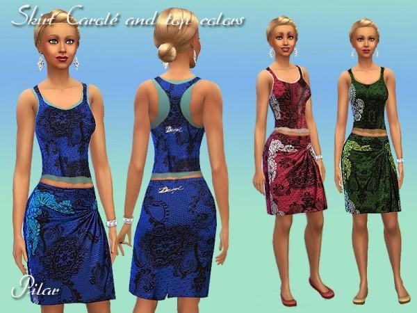 SimControl: Top and skirt