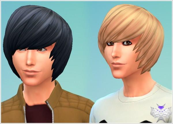 David Sims Emo Hair Sims 4 Downloads
