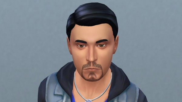 Mod The Sims: Six TS2 beards turned for TS4 by necrodog
