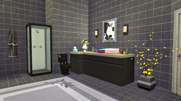 Sanjana Sims: Monochrome Bathroom