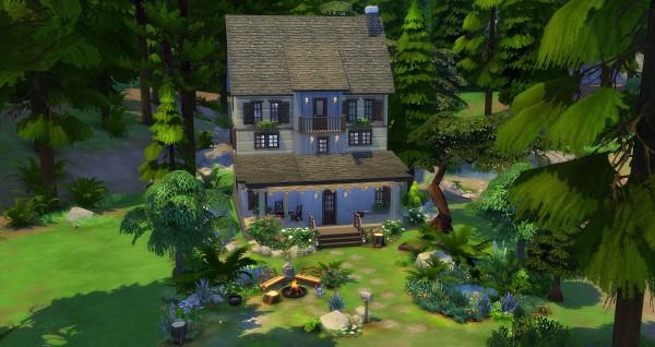 Studio Sims Creation: Ellébore