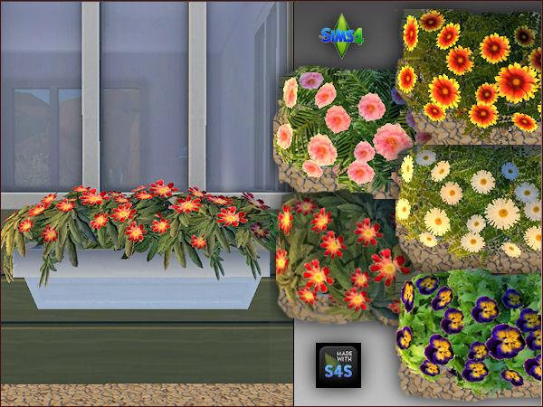 Arte Della Vita: 4 different colored plant pots with 5 different flowers