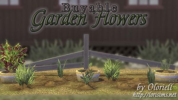 Lori Sims: Garden Flowers