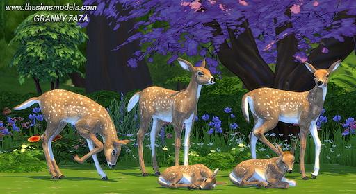 The Sims Models: Roe as decor by Granny Zaza