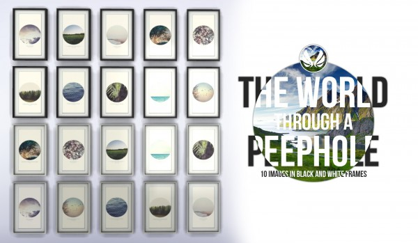 Simsational designs: The World Through a Peephole Paintings