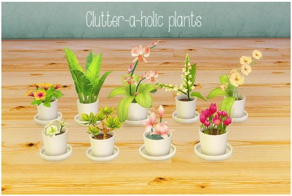 LinaCherie: Clutter a holic plants