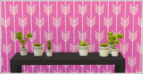 LinaCherie: Small plants