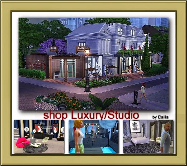 Architectural tricks from Dalila: Shop luxury/Studio