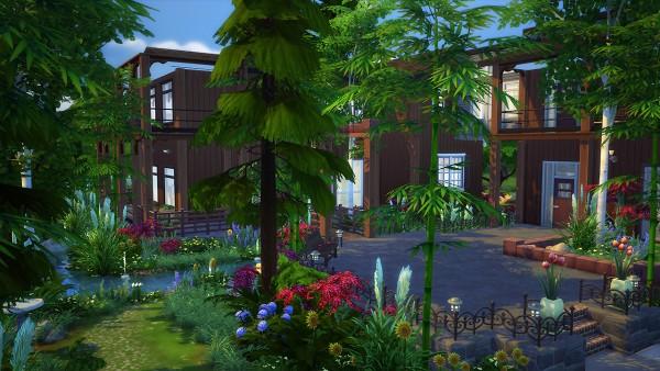 Fezets Corporation: Willow spleen house