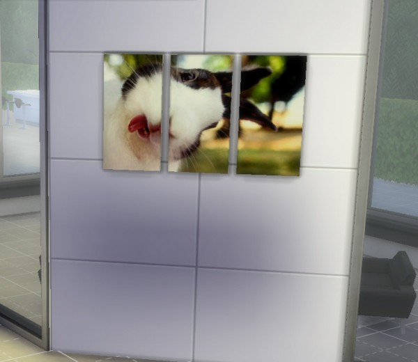 Amberlyn Designs Sims Cute Animals Pic Set Sims 4 Downloads