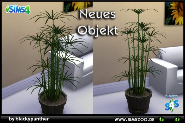 Blackys Sims 4 Zoo: Cyperus by blackypanther