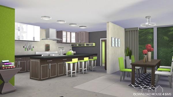 DH4S: Lime Kitchen – Green & Modern