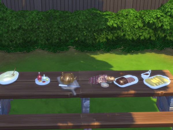 Sims Fans: Country Bio Food   Launch by Kresten 22