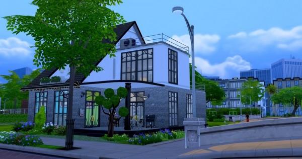 Ihelen Sims: French loft by Dolkin