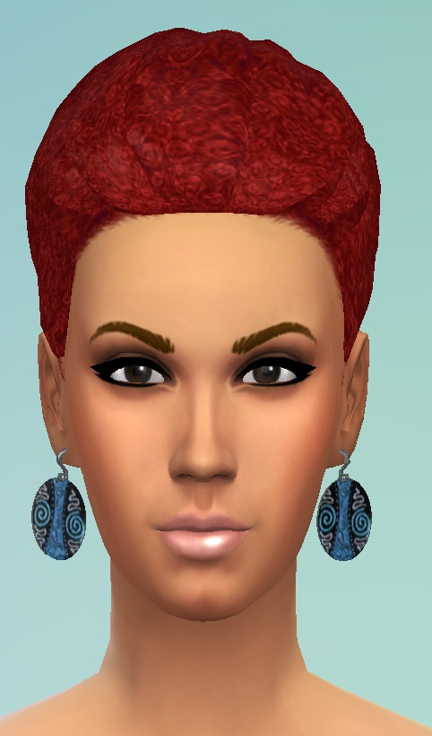 Birkschessimsblog: Afro Braid & Bun and Bangs