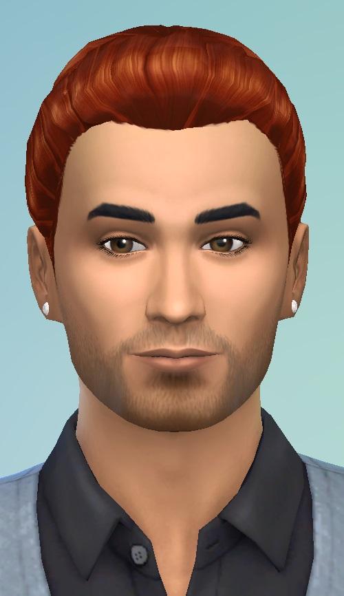 Birkschessimsblog: David hairstyle