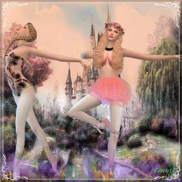 L`Universe De Nicole: Peau d'Âne    Princess