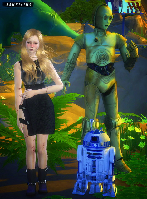 Jenni Sims: Droides decorative Star Wars