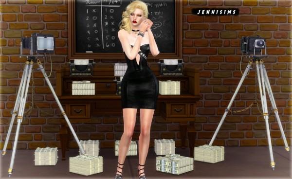 Jenni Sims: Decoration Vol.12   Vintage Camera, Money, Typewriter, Money Stack