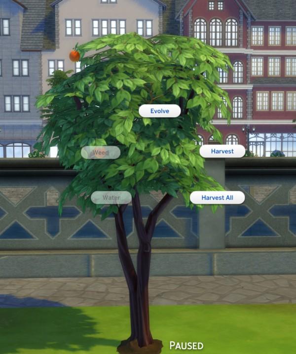 Mod The Sims Harvestable Peach Tree By Icemunmun Sims 4