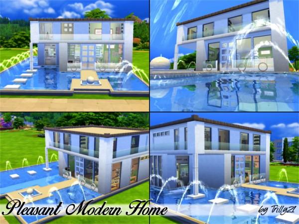 Trillyke: Pleasant Modern Home