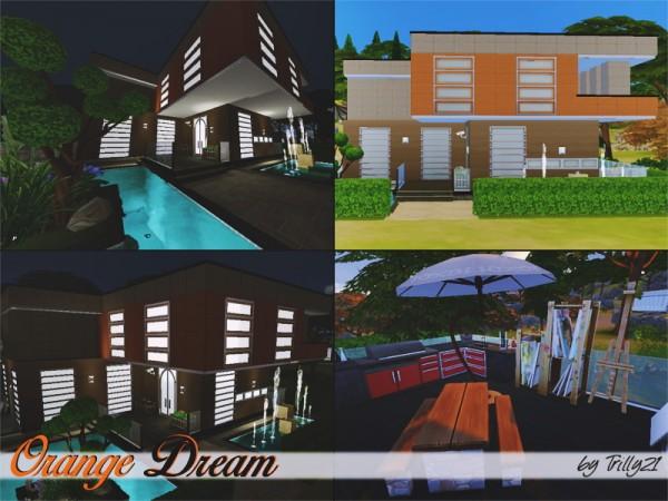 Trillyke: Orange Dream house