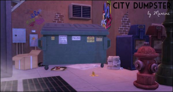 Martine Simblr: City dumpster
