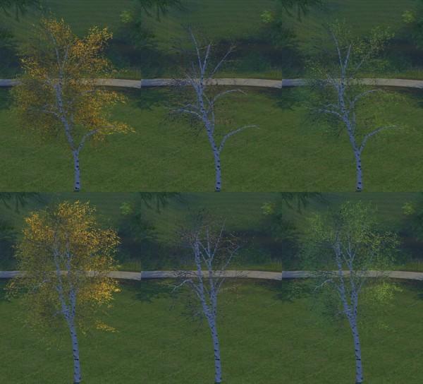 Alf Si: Trees