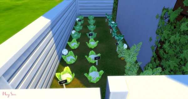 Mony Sims: Flower Shop