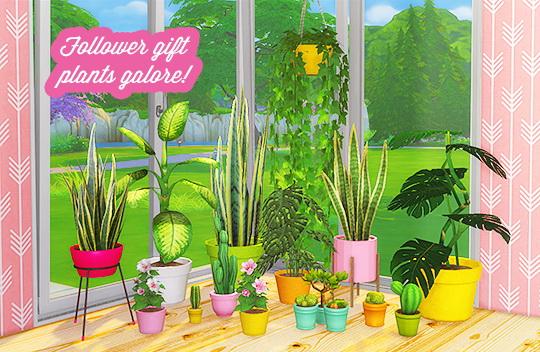 LinaCherie: 9000 Follower gift   Plants Galore!
