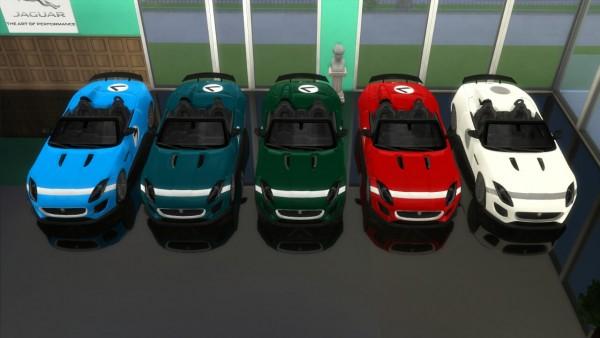 Lory Sims: Jaguar Project 7