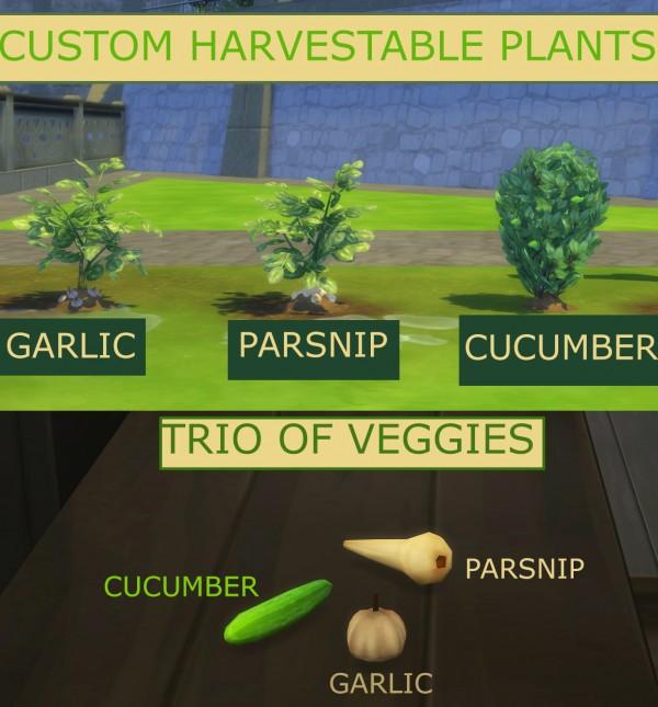Mod The Sims: Trio of Veggies   Custom Garlic, Parsnip and Cucumber by icemunmun
