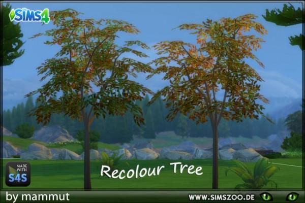 Blackys Sims 4 Zoo: Autumn tree by Mammut
