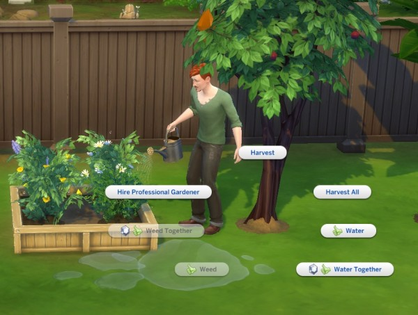 Mod The Sims: No Gardening Club Harvesting by ManxCat