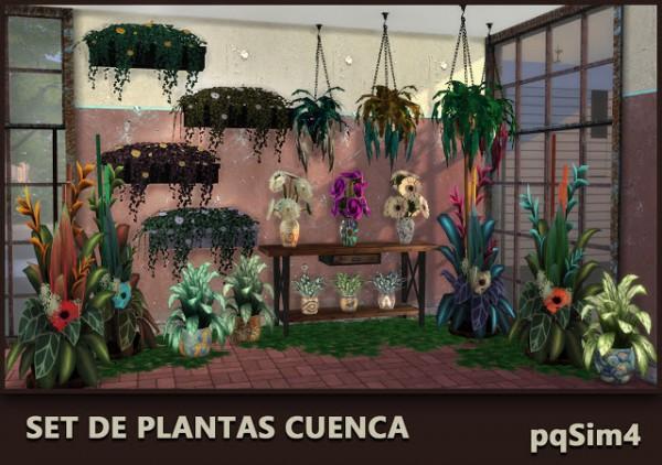 PQSims4: Cuenca plant set