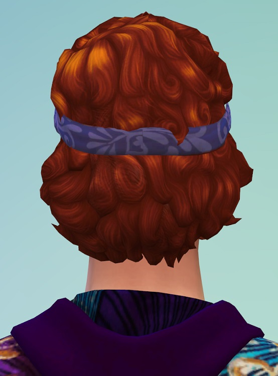 Birkschessimsblog: Curls with Headband for him and her