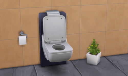 Veranka: No Talking Toilet