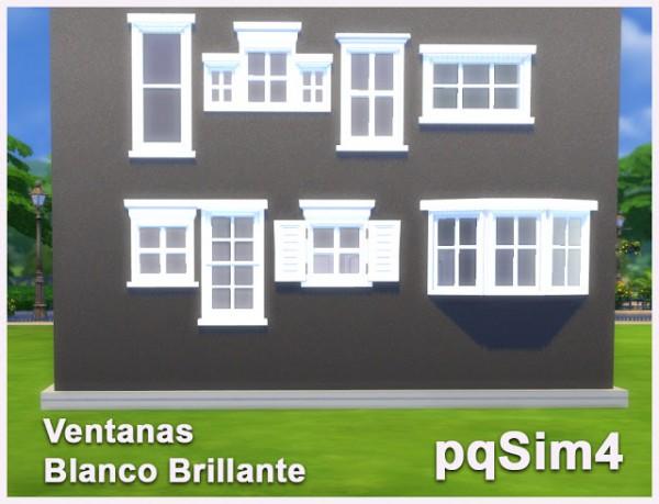 PQSims4: Bright White Windows