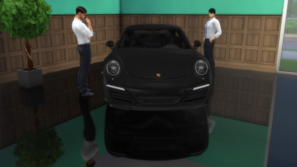 Lory Sims: Porsche 911 Carrera S