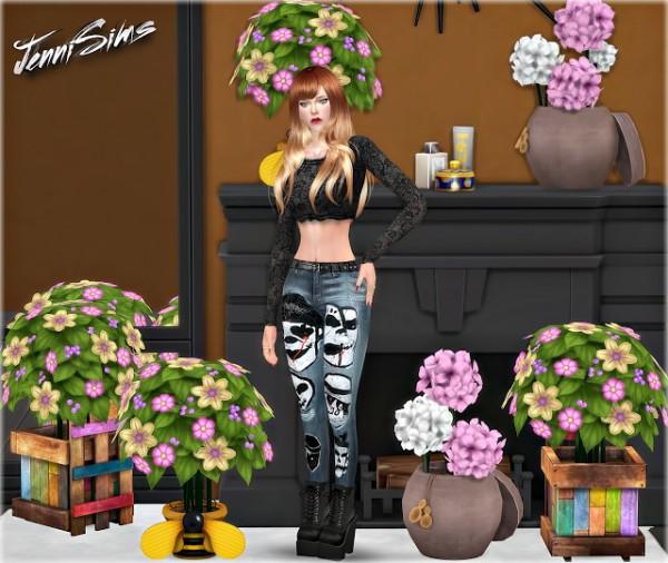 Jenni Sims: Decoratives plants