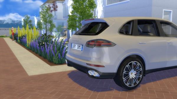 Lory Sims: Porsche Cayenne S