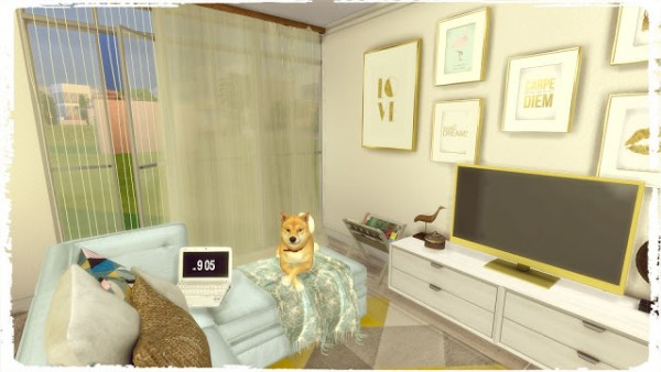 Dinha Gamer: Blue and Yellow Kitchen with Livingroom