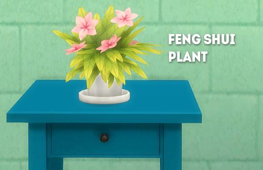 LinaCherie: Feng shui plant