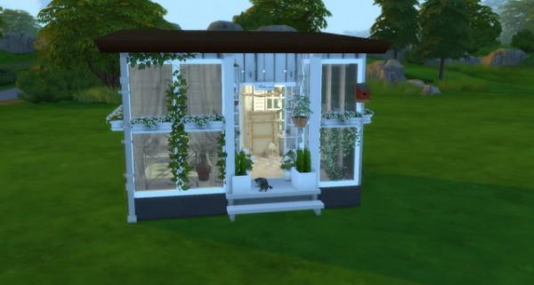 Pandashtproductions: Ivy Palace Sun Room