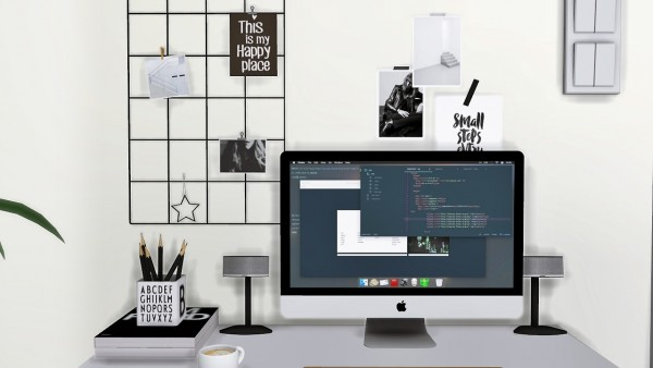 MXIMS: Mono Workstation