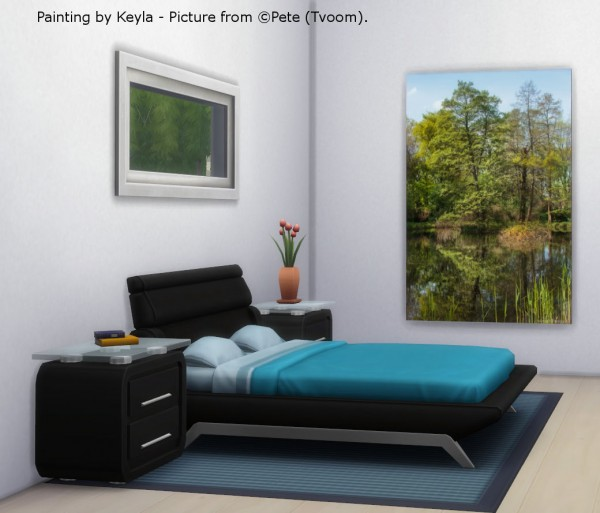 Keyla Sims: Pete paintings