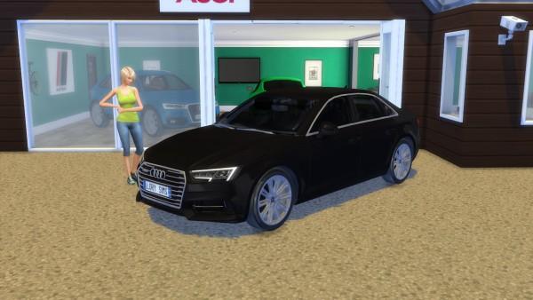 Lory Sims: Audi A4