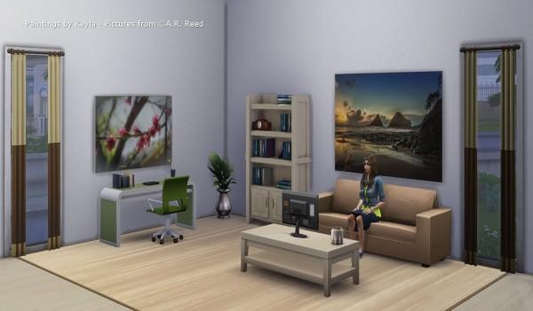 Asteria Sims: Novice at Play