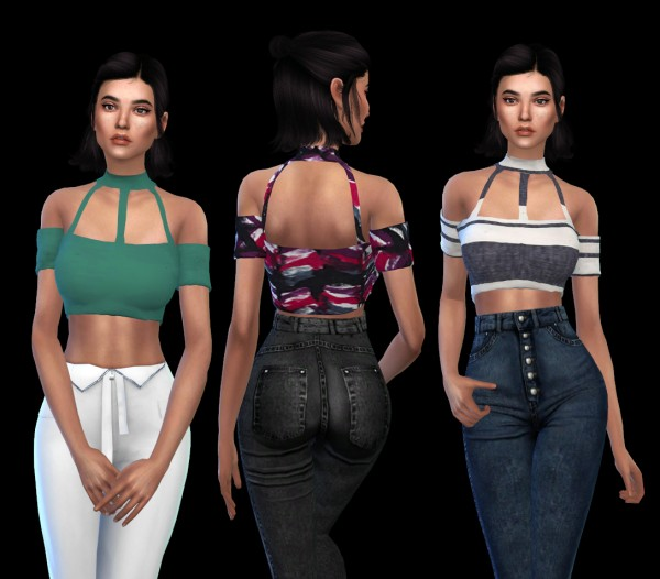 Leo 4 Sims: Pie croped top